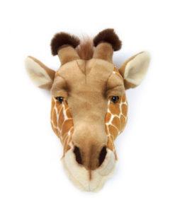 Dierenkop Giraffe