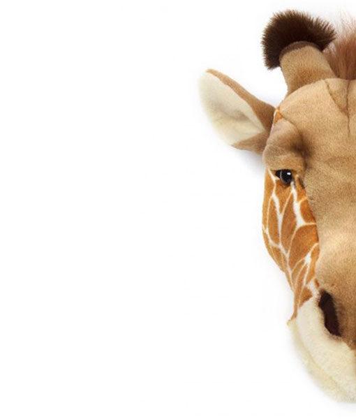 Dierenkop Giraffe detail