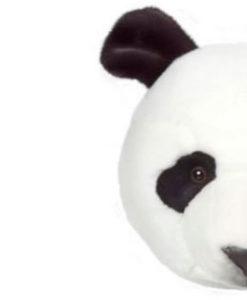 Dierenkop Panda detail